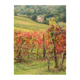 Casa y viñedo de la granja cuadro de madera