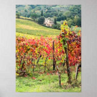 Casa y viñedo de la granja póster
