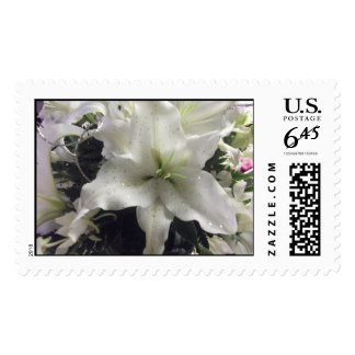 casablanca lily postage priority mail stamp