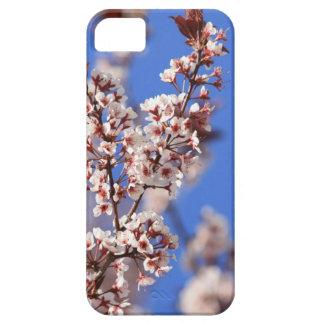 Casamata agradable del iPhone del flor del ciruelo iPhone 5 Fundas