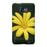 Casamata amarilla de la galaxia S de Samsung de la Samsung Galaxy S2 Carcasas