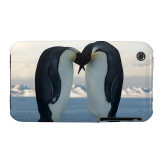 Casamata Barel del iPhone 3G/3GS del beso del Case-Mate iPhone 3 Fundas