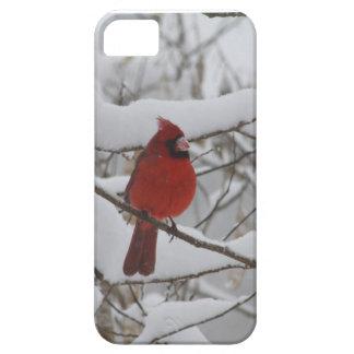 Casamata cardinal de Iphone 5 de la nariz Nevado iPhone 5 Case-Mate Cobertura