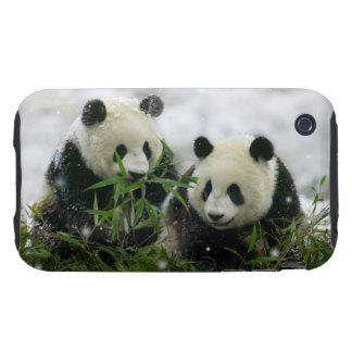 Casamata del iPhone 3G 3GS de los osos de panda du iPhone 3 Tough Cárcasas