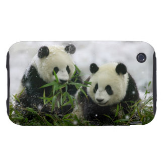 Casamata del iPhone 3G/3GS de los osos de panda Tough iPhone 3 Funda