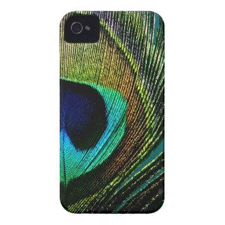 Casamata del iPhone 4 de la pluma del pavo real de Case-Mate iPhone 4 Cárcasa