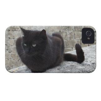 Casamata del iPhone 4 del gato negro Funda Para iPhone 4 De Case-Mate