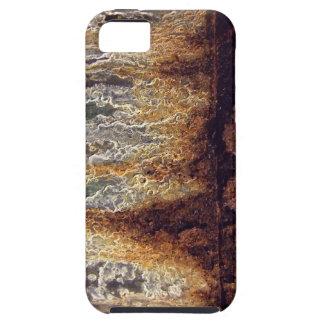 Casamata del iPhone 5 del moho y de la corrosión iPhone 5 Fundas