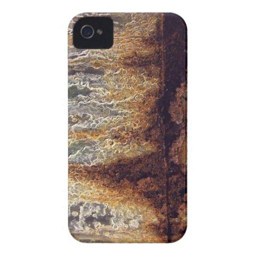 Casamata del iPhone del moho y de la corrosión Case-Mate iPhone 4 Funda