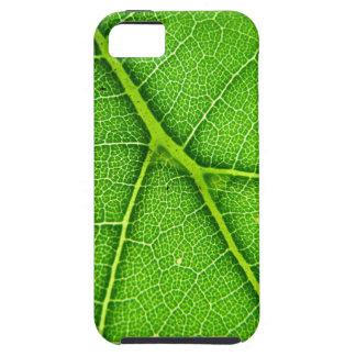 Casamata macra del iPhone 5 de la hoja verde dura iPhone 5 Fundas