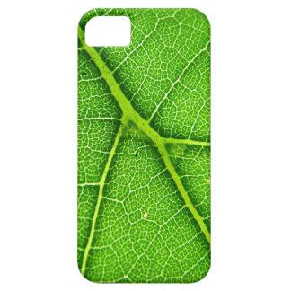 Casamata macra del iPhone 5 de la hoja verde iPhone 5 Carcasa