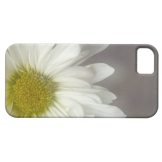 Casamata suave del iPhone 5 de la margarita blanca iPhone 5 Case-Mate Protectores