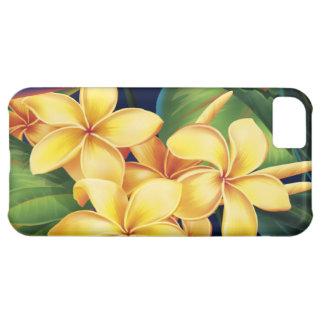 Casamata tropical del iPhone 5 del Plumeria del Funda Para iPhone 5C
