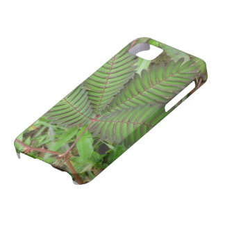 Casamata verde del iPhone 5 de la hoja de la flor iPhone 5 Fundas