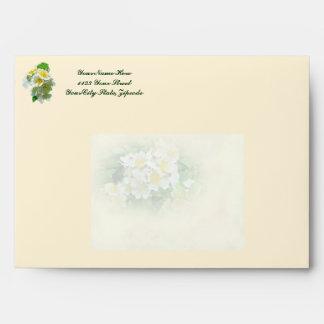 Casar los rosas de Multiflora de los deseos