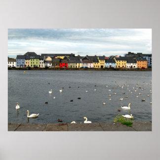 Casas irlandesas póster