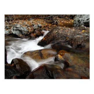 Cascada de Alaska del otoño del AAW Tarjeta Postal