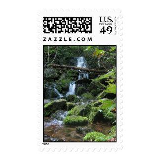 Cascada de la cascada en naturaleza enorme del sellos