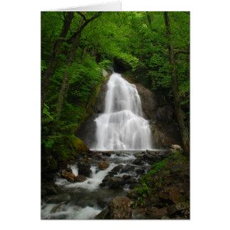 Cascada de la primavera tarjeta de felicitación
