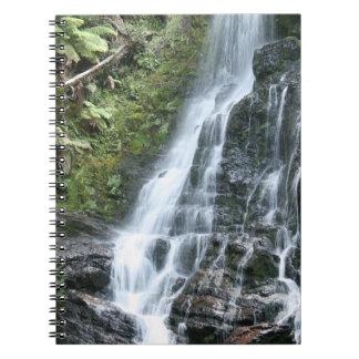 Cascada de la selva tropical - libreta