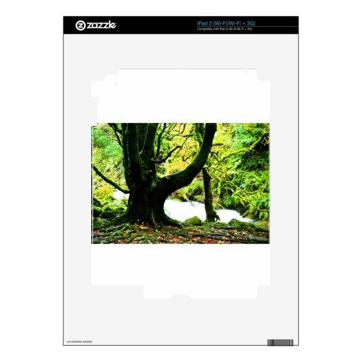 Cascada de Torc iPad 2 Calcomanías