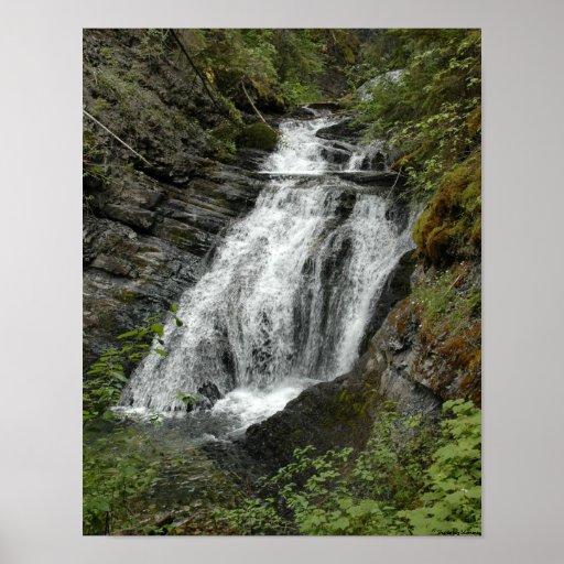 Cascada de Washington/de Idaho Poster
