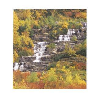 Cascada debajo del cañón del Mt en nacional del gl Blocs De Notas