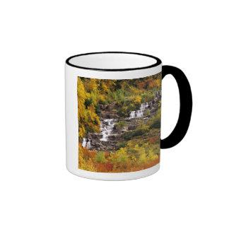 Cascada debajo del cañón del Mt en nacional del gl Taza De Café