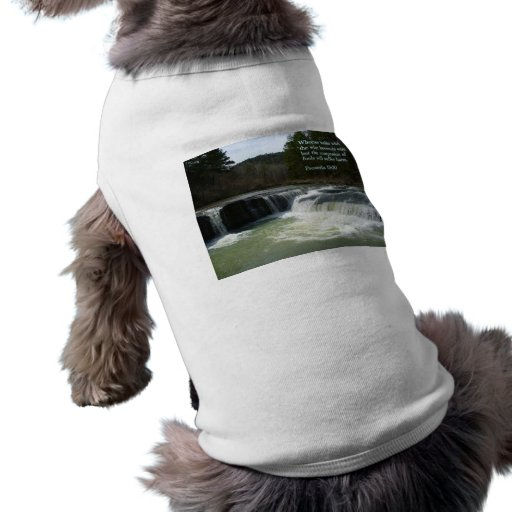 Cascada del 13:20 de los proverbios ropa para mascota