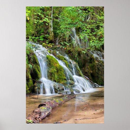 Cascada del agua en el bosque posters