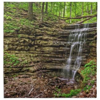 Cascada del bosque servilleta imprimida