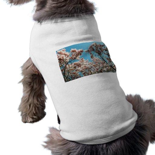 Cascada del flor ropa de perros