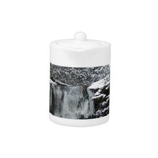 Cascada del invierno Nevado