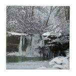 Cascada del invierno Nevado Teja Ceramica
