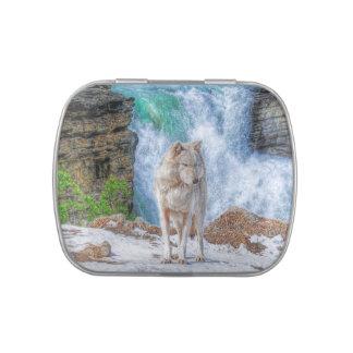Cascada del lobo gris blanco y de la montaña rocos frascos de dulces