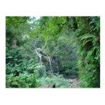 Cascada en el camino a la postal de Hana