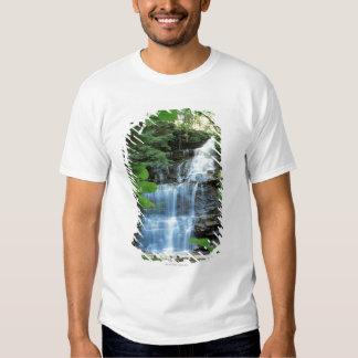 Cascada en el parque de estado de la cañada del polera