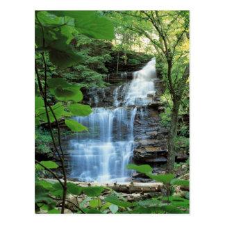 Cascada en el parque de estado de la cañada del tarjetas postales