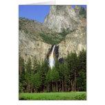 Cascada en el parque nacional de Yosemite, Califor Felicitacion
