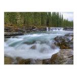 Cascada en el río de las ovejas en Rocky Postales