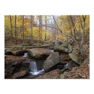 Cascada en el río negro - NJ escénico Arte Fotográfico