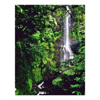 "Cascada en la selva folleto 8.5"" x 11"""