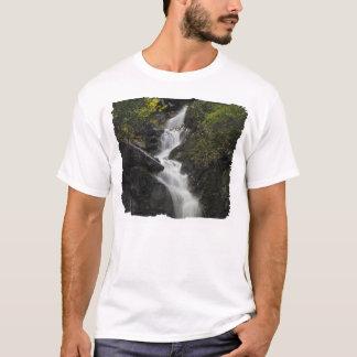 Cascada en las rocas playera