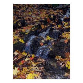 Cascada en octubre tarjeta postal
