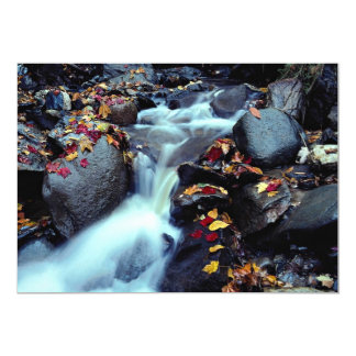 Cascada en otoño, cerca de Capelton, Estrie, Anuncio