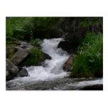 Cascada en Parque Nacional de las Montañas Rocosas Postal