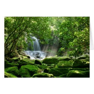 Cascada en selva tropical tarjetón