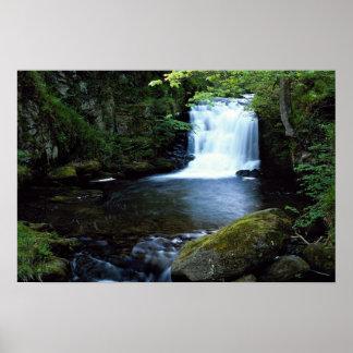 Cascada en Watersmeet, Devon del norte, Inglaterra Póster