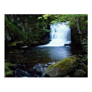 Cascada en Watersmeet, Devon del norte, Inglaterra Tarjetas Postales
