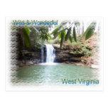 Cascada escénica de Virginia Occidental Tarjetas Postales